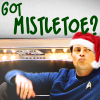 """T"": Jim and Bones - Got Mistletoe"
