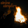 Canine Campfire