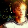 Kelly: arthur for camelot