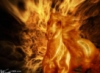 огненная лошадь pic#114896391