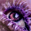 elvenknight16: A Purple View