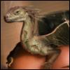 dragon_column userpic
