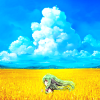 stock: blue sky yellow field
