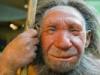Старый неандерталец