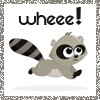 why don't you go sit on a spear?: (cute overload) wheee-racoon