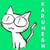 karunesh84 userpic