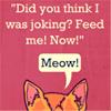 Misc - Cat