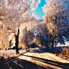 Miya Tenaka: Stock - Winter