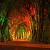 Autumn path (ohsweetwitchery)