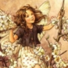 blackthorn fairy