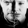 Fringe - Polivia Tree