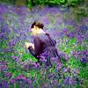 BS_lavender