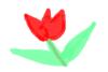solenka userpic