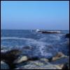 muotri userpic