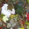 aaliona userpic