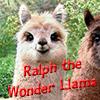 --♫ Anna--: Llama
