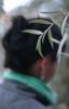 aranid16 userpic