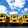 Port: school buses