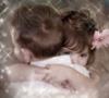 boy_kiss_girl