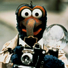 muppets: Gonzo with camera