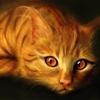 gato_fogoso userpic
