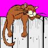 ленивый рыжий кот
