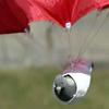 parachute pigeon