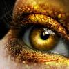 kittylefish: goldeneye