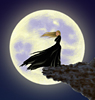 windy_full_moon userpic