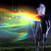 Unicorn rainbutt