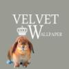 velvet_w userpic