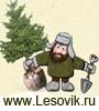 Ландшафтный дизайн и озеленение, www.lesovik.ru