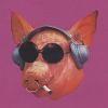 Свин позитивный