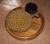 Tojidi Nido: durian