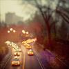 avaserenity: stock: park drive