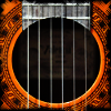 alligator138: Guitar rosette