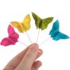 paper_papillon userpic