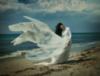 море и крылья