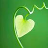 Sylvia: heart green