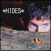Merlin hiding