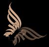 молчащая птица: крылья