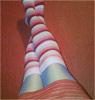 ноги роз