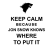 jon snow knows