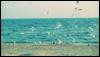 katya_snezhkova userpic