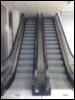 helgastervozina: crazy elevator