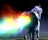 Farting Unicorn