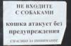 koshka_fe userpic