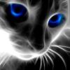askadias userpic