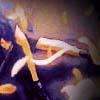 olayzara userpic