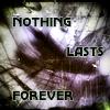 havamahal: forever